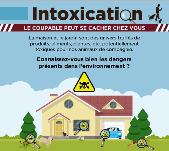 Accident domestique : attention !